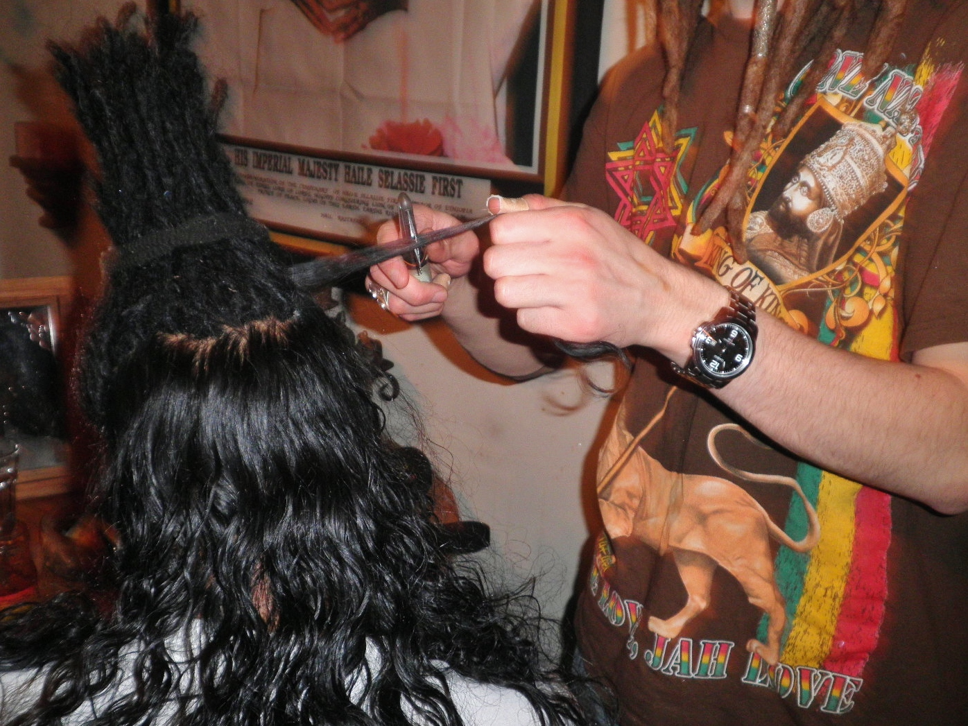 Brandnew natural dreadlocks in the making